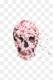 flower skull png images vectors and psd files free on