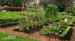 vegetable garden designs vegetable garden plan for beginners