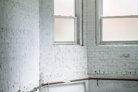 how to clean mold off basement concrete walls hunker