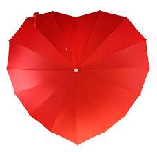 umbrella heaven supplying the world with stylish umbrellas