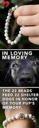 best 25 dog died ideas on pinterest sad dog stories dog
