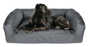 dog mattress beds dog sofa beds large dog sofa beds ireland buddy