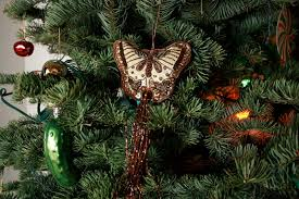 christmas pickle the mysterious tradition of hiding a pickle on christmas trees