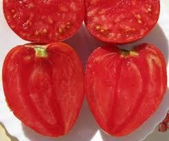 comment cuisiner le coeur de boeuf la vraie tomate cœur de bœuf