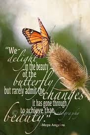 Meaningful Butterfly - transformation is not easy ask the butterfly angelou