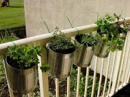 kitchen herb garden ideas 21 kitchen herb garden ideas fit for every space tastymatters