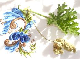 Online Home Decorator by Dried Geranium Leaves Willow Cottage