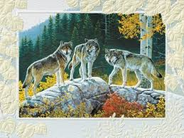 pumpernickel press wildlife cards wolves wildlife inspirational birthday greeting cards