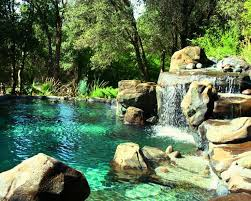 Swimming Pool Backyard Designs by Best 20 Natural Swimming Pools Ideas On Pinterest Natural Pools
