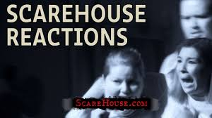 hilarious haunted house reactions at scarehouse youtube