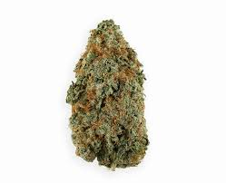 buy weed flower online cannabis flower from terra cannabis