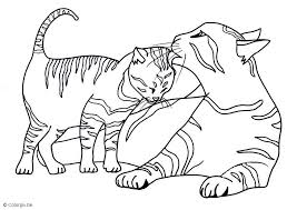 printable pictures kittens coloring