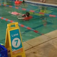 goldfish swim ann arbor 24 photos u0026 15 reviews