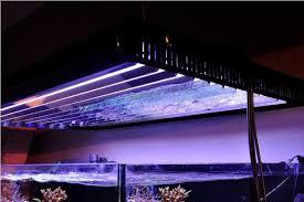 t5 aquarium light fixture oziris lighting seeks to breathe new life into t5 aquarium fixtures