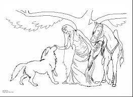 brilliant rearing horse coloring pages free horse coloring