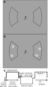 endogenous attention signals evoked by threshold contrast
