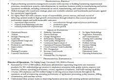 Senior Manager Resume Template Download Executive Resume Examples Haadyaooverbayresort Com