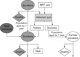modelling the health benefits of smoking cessation in japan
