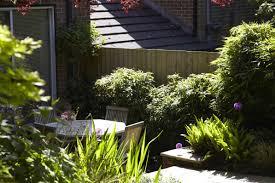 3d garden design software awesome d landscape design software