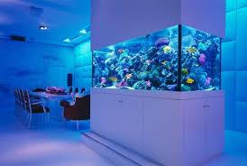 chambre aquarium ordinaire decoration d une chambre 1 la d233coration avec un