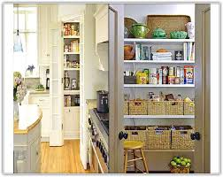 small kitchen pantry ideas pantry designs for small kitchens home design ideas