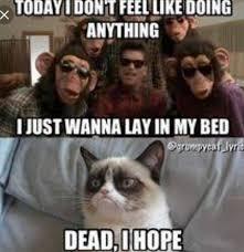 Internet Meme Songs - grumpy cat sings treasure by bruno mars grumpycat grumpy cat