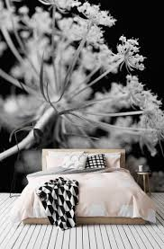 White Rose Bedroom Wallpaper 12 Best Images About Black And White Wallpaper On Pinterest