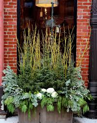 winter garden containers flags on a stick blog pinterest