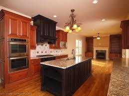 types of wood cabinets types of wood kitchen cabinets black metal oven under cabinet wooden