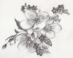 draw flower by pencil how to draw a flower color pencil drawing
