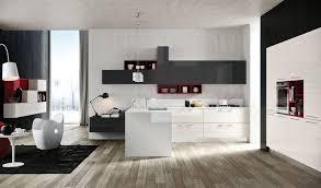 Black And White Kitchens Ideas Kitchen Design Magnificent Red Black And White Kitchen Red White