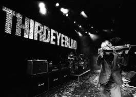 Third Eye Blind In Concert 92 Best 3 Eye Blind Images On Pinterest Third Eye Blind