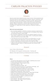 Sales Sample Resume by Sales Agent Resume Samples Visualcv Resume Samples Database