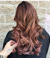 rose gold lowlights on dark hair concrete proof that rose gold is the still perfect rainbow hair