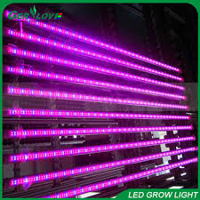 t5 vs led grow lights customized available waterproof hydroponic grow light t8 t5 red