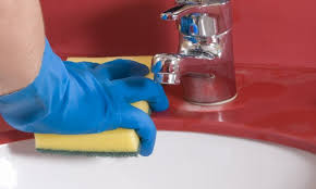 Bacteria In Kitchen Sink - what u0027s the best way to get rid of the germs in my sink smart tips