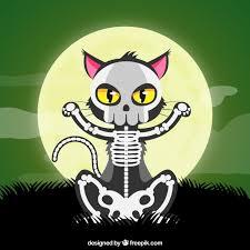 halloween cat with skeleton vector free download