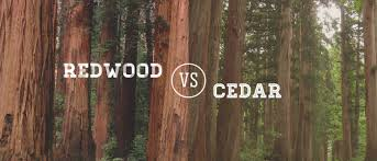 Red Cedar Shingles Home Depot by Redwood Vs Cedar
