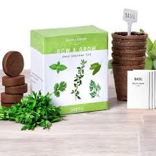 indoor herb garden kits to grow herbs indoors hgtv organic gardening grow light kits indoor container gardening