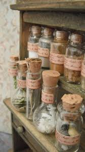 89 best cabinet de curiosités images on pinterest bell jars