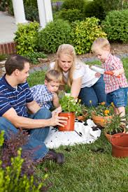 lawn care programs for do it yourself welcome to lawn care org diy landscaping lawncare treatment