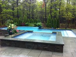 Backyard With Pool Landscaping Ideas by Fresh Infinity Pool Plumbing Design 8650