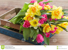 bunch of spring flowers in wooden crate stock photo image 39145472