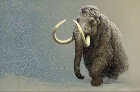 woolly mammoth snowstorm paleoartist carl buell primeval