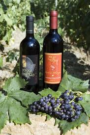 761 best wine images on pinterest wines wine cheese and beverage