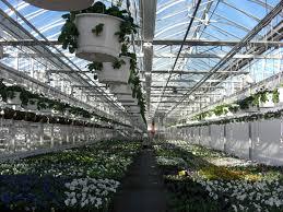 modern green house new 95 a modern greenhouse volante farms