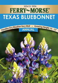 amazon com ferry morse 1164 texas annual flower seeds