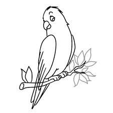 bird in a tree animals how to draw
