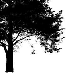 cut out black tree by bobthetenth on deviantart