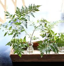 planter box great for centerpiece refresh restyle